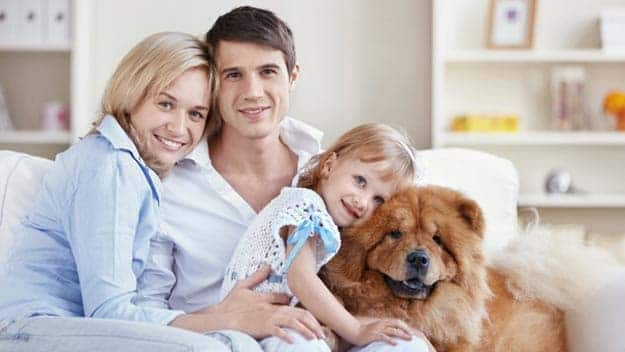 Wills & Trusts dog-young-family Direct Wills West Dulwich